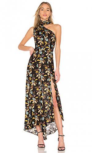 Макси платье ava floral NICHOLAS. Цвет: черный