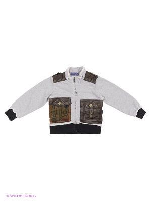 Куртка-толстовка Evita Baby. Цвет: серый
