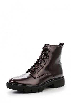 Ботинки Geox. Цвет: бордовый