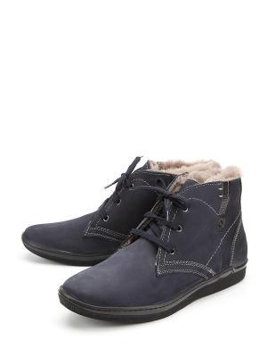 Ботинки Stingray. Цвет: синий
