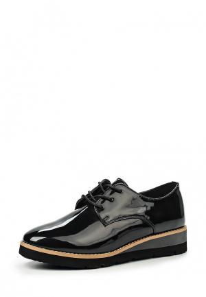 Ботинки CLAUDIA GHIZZANI. Цвет: черный