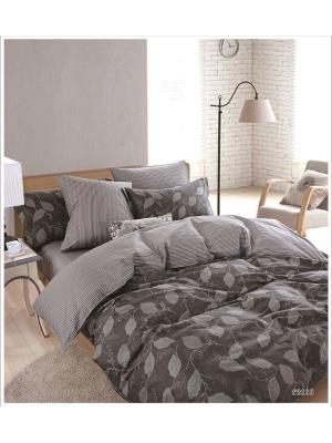 Комплект постельного белья ROMEO AND JULIET. Цвет: темно-серый, светло-серый