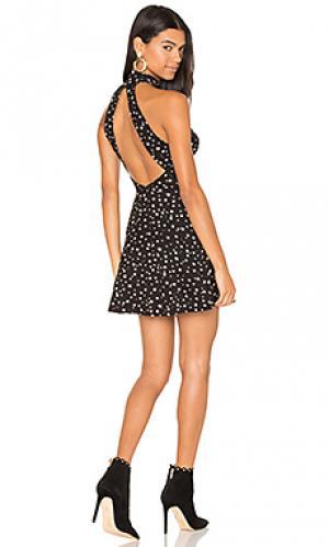 Мини платье aliza Clayton. Цвет: черный