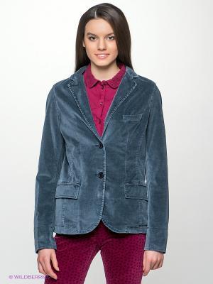 Пиджак NAPAPIJRI. Цвет: серо-голубой