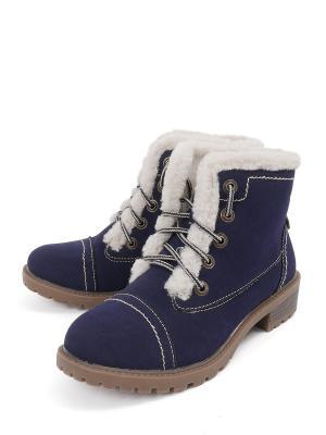 Ботинки TF. Цвет: синий