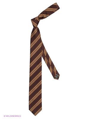 Галстук Alex DANDY. Цвет: темно-коричневый, темно-бежевый, антрацитовый
