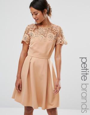 Paper Dolls Petite Платье для выпускного с однотонным кружевным верхом. Цвет: рыжий