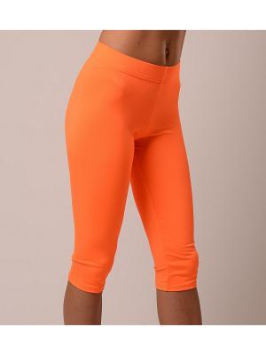 Бриджи EMDI. Цвет: оранжевый