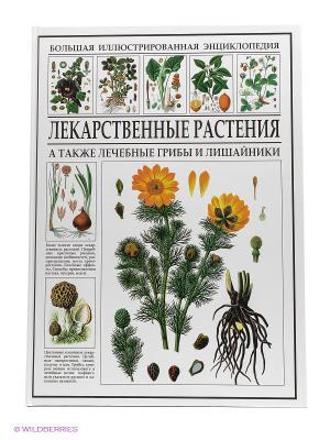 БИЭ. Лекарственные растения Издательство СЗКЭО. Цвет: белый