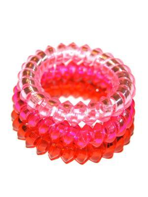 Резинки Lola. Цвет: розовый, малиновый, красный