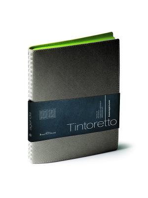 Еженедельник, Tintoretto, В5 Bruno Visconti. Цвет: серый