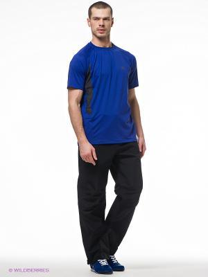 Спортивные брюки Trespass. Цвет: черный