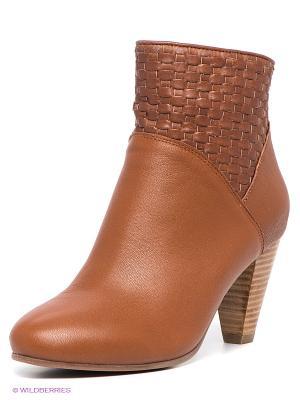 Полусапожки Shoe the Bear. Цвет: коричневый