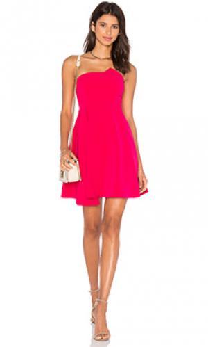 Приталенное и расклешенное платье stop and believe Lumier. Цвет: фуксия
