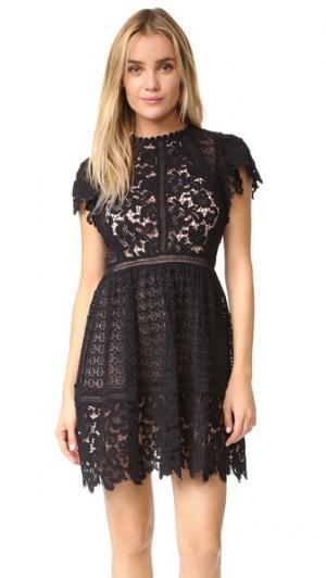 Кружевное платье Mix с короткими рукавами Rebecca Taylor. Цвет: голубой