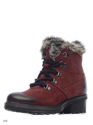 Ботинки KHRIO. Цвет: бордовый