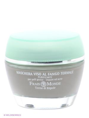 Очищающая маска для лица Frais Monde. Цвет: серый, голубой