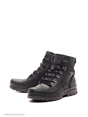Ботинки TRACK 6 ECCO. Цвет: черный