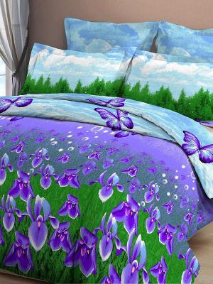 Постельное белье Letto. Цвет: фиолетовый, зеленый, голубой
