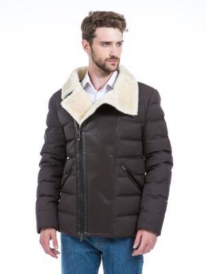Куртка Clasna. Цвет: темно-коричневый
