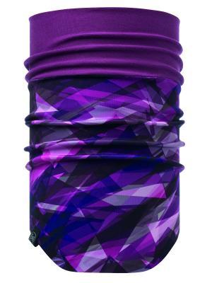 Снуд WINDPROOF NECKWARMER CRASH BERRY Buff. Цвет: фиолетовый