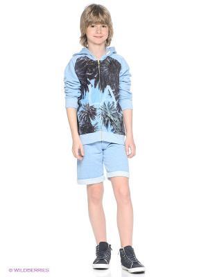Шорты American Outfitters. Цвет: голубой