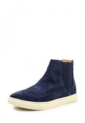 Ботинки Polo Ralph Lauren. Цвет: синий