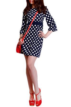 Платье FRANCESCA LUCINI. Цвет: горох