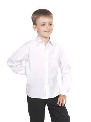Рубашка SEMICVET. Цвет: белый