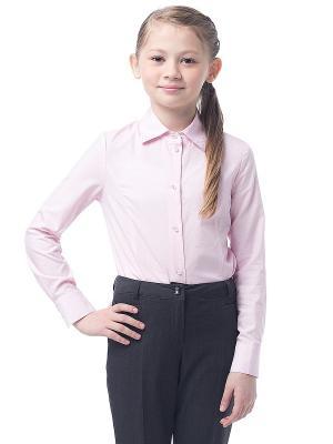 Блузка Cleverly. Цвет: розовый