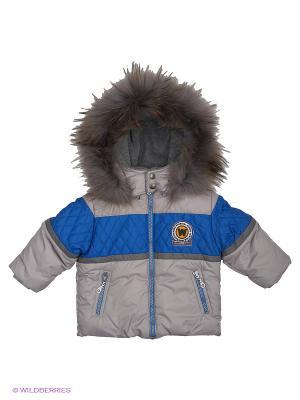 Куртка Wojcik. Цвет: синий, серый