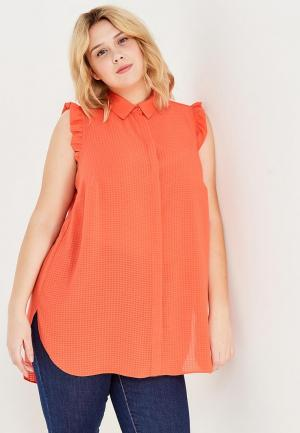 Блуза Dorothy Perkins Curve. Цвет: коралловый