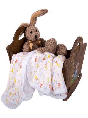 Одеяло трикотажное 75х90 Транспорт DAISY. Цвет: серо-коричневый, белый, голубой, коралловый, салатовый