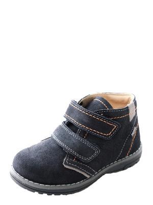 Ботинки для мальчика PRIMIGI. Цвет: темно-синий