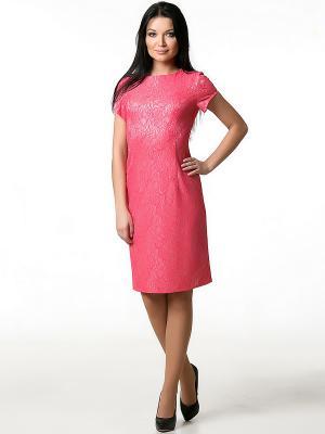 Платье Spicery. Цвет: коралловый