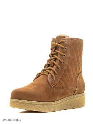 Ботинки женские GUT. Цвет: коричневый