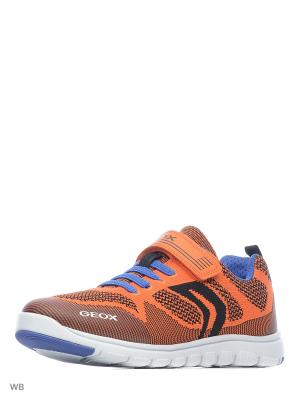 Кроссовки GEOX. Цвет: оранжевый, синий