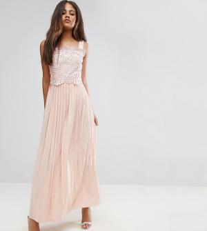 Little Mistress Tall Премиум-платье макси с кружевным топом и плиссированной юбкой M. Цвет: розовый