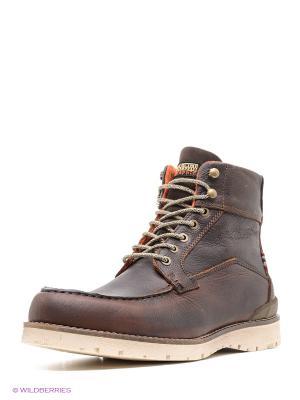 Ботинки NAPAPIJRI. Цвет: коричневый