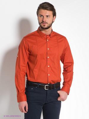 Рубашка MONDIGO. Цвет: терракотовый