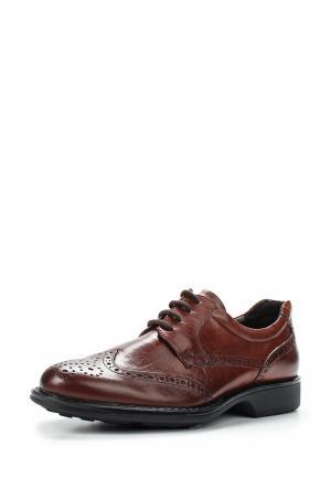 Туфли Mauromauro. Цвет: коричневый