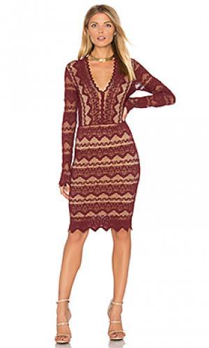 Кружевное платье с v-образным вырезом sierra Nightcap. Цвет: красный
