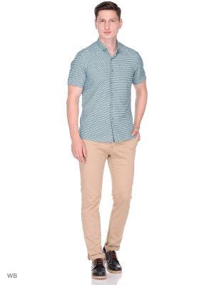 Рубашка CARAT.. Цвет: зеленый