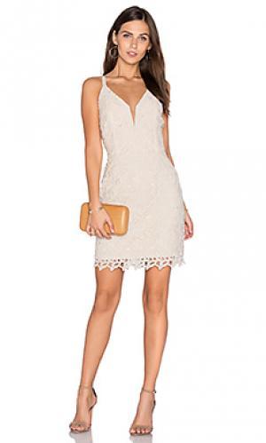 Кружевное платье olivia Greylin. Цвет: ivory