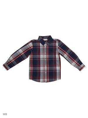 Рубашка NAME IT. Цвет: коралловый