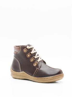 Ботинки BELWEST. Цвет: коричневый