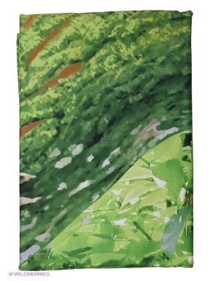 Постельное белье Buenas Noches. Цвет: зеленый, бежевый