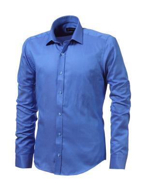Рубашка BIRIZ. Цвет: синий