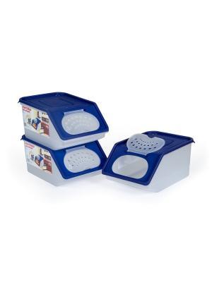 Набор из 3х контейнеров для овощей 7,6 л. Полимербыт. Цвет: синий, белый
