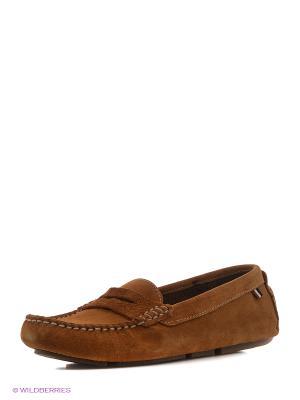 Мокасины U.S. Polo Assn.. Цвет: коричневый
